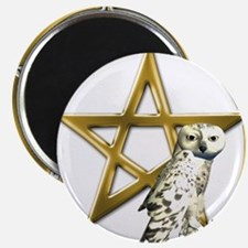 Gold Pentacle with Owl Magnets