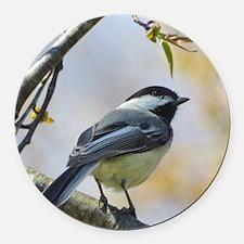 Spring Chickadee Songbird Round Car Magnet
