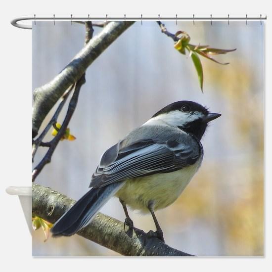 Spring Chickadee Songbird Shower Curtain