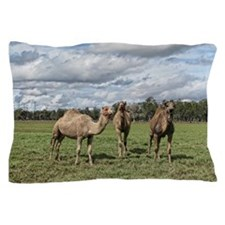 Camels in the field Pillow Case