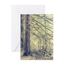Forest Fence Greeting Cards