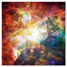 The Cat Galaxy Poster