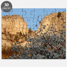 SENECA ROCKS WITH DOGWOOD Puzzle