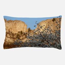 SENECA ROCKS WITH DOGWOOD Pillow Case