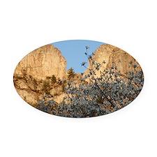 SENECA ROCKS WITH DOGWOOD Oval Car Magnet