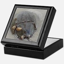 Unique Endangered Keepsake Box