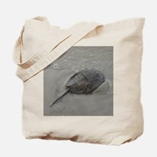 Cute Horseshoe Tote Bag