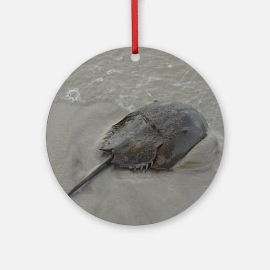 Cute Rare Round Ornament