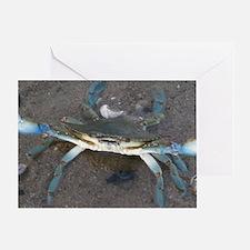 Unique Shore fishing Greeting Card