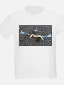 Cute Coastline T-Shirt