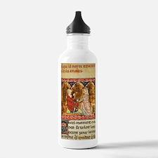 Cute Medieval Water Bottle