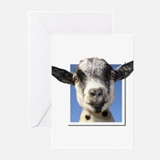 Pygmy Goat Greeting Cards