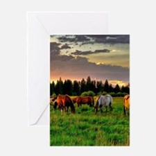 Horses Grazing Greeting Cards