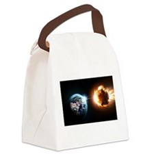 Earth And Asteroid Canvas Lunch Bag