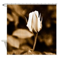 Sepia rose bud Shower Curtain