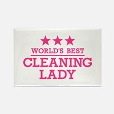 World's best cleaning Rectangle Magnet (100 pack)