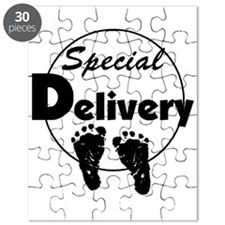 Special Delivery Puzzle