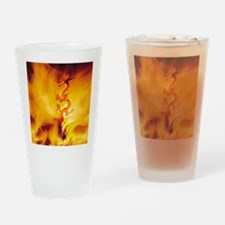 Dragon Fire Dancer Drinking Glass