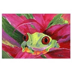 Ruby Tree Frog Poster