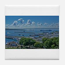 Mackinac Island View Tile Coaster