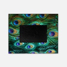Peacock Feathers Picture Frame