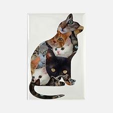 Cat Cat Rectangle Magnet