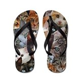 Cat collage Flip Flops