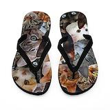 Cat collage Flip Flops