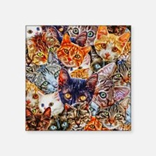 """Kitty Cat Collage Square Sticker 3"""" x 3"""""""