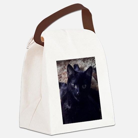 Jennie 2 Canvas Lunch Bag