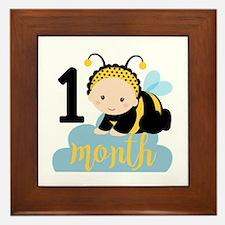 1 Month Monthly Milestone Framed Tile
