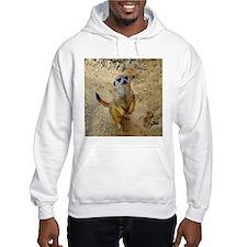 lovely meerkat 515P Jumper Hoody
