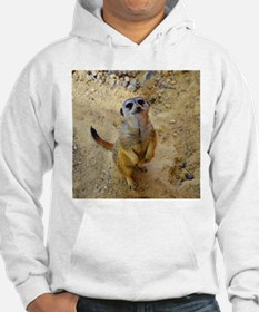 lovely meerkat 515P Jumper Hoody