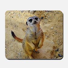 lovely meerkat 515P Mousepad