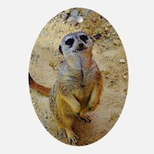 lovely meerkat 515P Ornament (Oval)