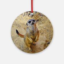 lovely meerkat 515P Ornament (Round)