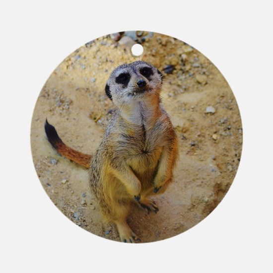 lovely meerkat 515P Ornament (Round)