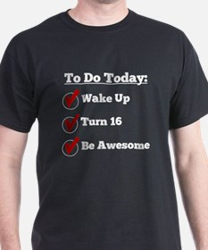 16th Birthday Checklist T-Shirt
