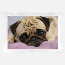 Pug Puppy Pillow Case