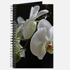 Cool Orchid Journal