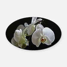 Unique Orchid Oval Car Magnet