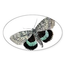 Cute Insects Decal