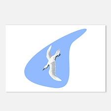 Albratross Bird Postcards (Package of 8)