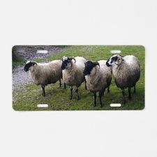 Unique Sheep Aluminum License Plate