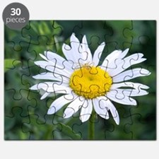 Spider on Daisy Puzzle