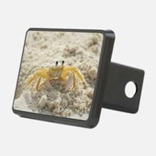 Yellow Crab on Sand Hitch Cover