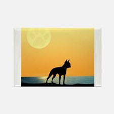 Cute Boston terriers Rectangle Magnet