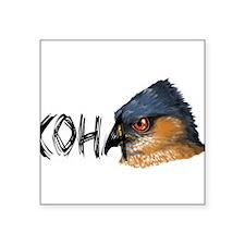"""Cute Coopers hawk Square Sticker 3"""" x 3"""""""