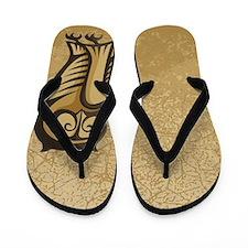 Owl Symbol Color Flip Flops