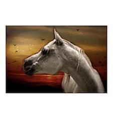 Funny Horses desert Postcards (Package of 8)